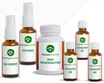 homeopathic remedies for dog skin